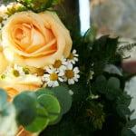 Lizzie & Chris Wedding 393