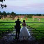 Lizzie & Chris Wedding 483