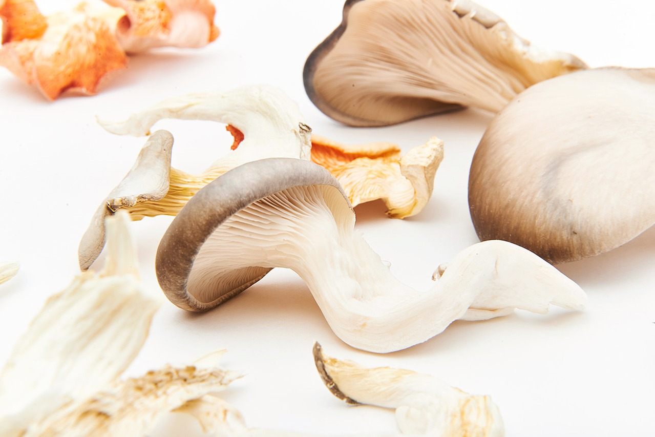 Urban Mushrooms YMCA Product Photography in Newcastle Kitchen 3
