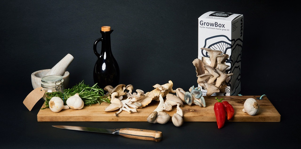 Urban Mushrooms YMCA Product Photography in Newcastle Kitchen